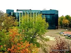 BU at fall (Mariusz_Kucharczyk) Tags: green education poland polska lodz d uniwersytet srodmiescie rdmiecie lodznanowo