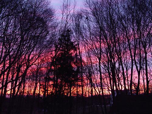 November sunrise2
