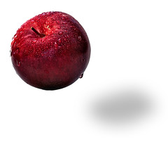 Apple (Imapix) Tags: red canada art apple nature wet oneaday canon photography photo mac bravo foto photographie searchthebest image quebec magic qubec trick onwhite magical mcintosh pomme imapix gaetanbourque aplusphoto diamondclassphotographer betterthangood alemdagqualityonlyclub imapixphotography gatanbourquephotography