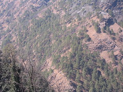 Jammu trip (sunnyoraish) Tags: trip sunset mountain nature jammu katra vaishnodevi