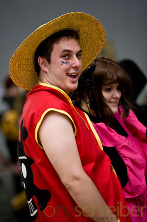One Piece Luffy Cosplay