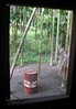 Window view (Mangiwau) Tags: new house west tree window indonesia guinea view shot drum cluster palm nut papua jaya betel barat pinang irja kaikai pohon pertamina sarmi irian buai papuan papouasie beneraf