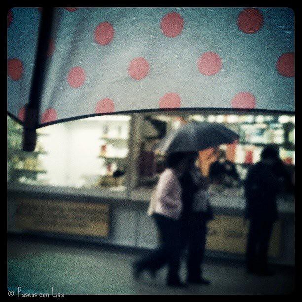 (362) Lunes lluvioso