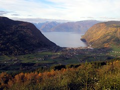 Vik valley and fjord