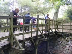 poohsticks bridge (zenitpetersburg) Tags: wood uk bridge forest hundred pooh 100 winnie acre ashdown poohsticks
