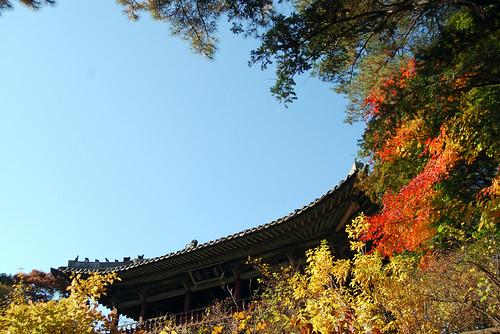 Juhamnu Pavilion, Changdeokgung Palace