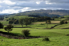 Lake District Fields - England ({ Planet Adventure }) Tags: holiday wow photography photo interesting bravo photographer ab adventure planet thebest allrightsreserved interessante digitalphotography holidayphotos stumbleupon copyright travelguide travelphotography digitalworld intrepidtraveler traveltheworld planetadventure colorfulworld worldexplorer amazingplanet by{planetadventure} byalessandrobehling intrepidtravel alessandrobehling stumbleit topphotography holidayphotography spiritofphotography alessandrobehling copyright20002008alessandroabehling colorfulearth photographyhunter photographyisgreatfun