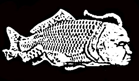 Seaman print