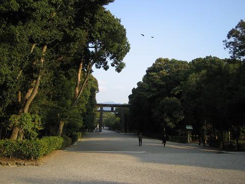 橿原神宮-参道