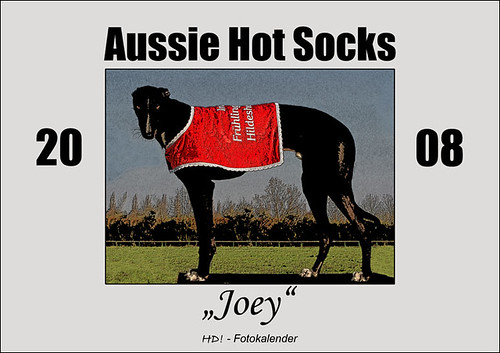 Aussie Hot Socks - Joey 2008 - HD! Fotokalender