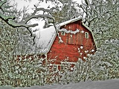 Tranquil Barn (newagecrap) Tags: winter wisconsin rural barns farms lyons blueribbonwinner golddragon walworthcounty diamondclassphotographer