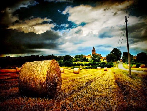 Harvest (Summer Memories) by ToniVC, on Flickr