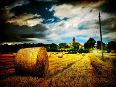 Harvest (Summer Memories) (ToniVC) Tags: road summer rural canon countryside village view rustic memories harvest straw catalonia girona powershot fields rolls cereals campestre cartell countryscape pags a640 flickrplatinum jul2007 tonivc enyorolestiusortquesacosta