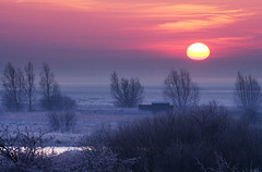 Sunrise at Wicken Fen (A Greenwood) Tags: sunrise frostymorning soe wickenfen greatbritishlandscapes