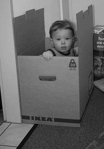 Playing in Box