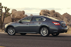 2009 nissan Maxima pictures 6