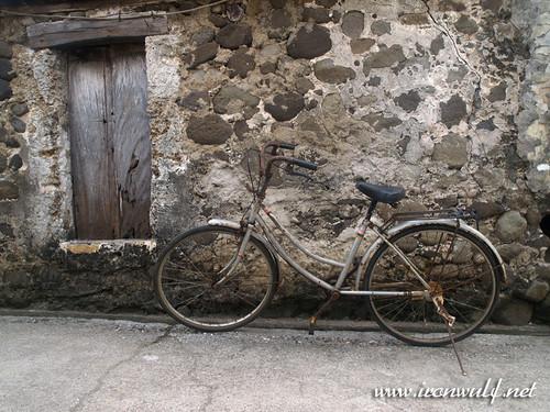 Savidug Window and Bike