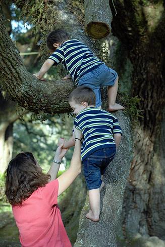 DSC_8238-Two-tree-climbers