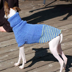 Knitting Patterns For Greyhound Sweaters : KNITTED PATTERNS GREYHOUND SWEATER Free Knitting and ...