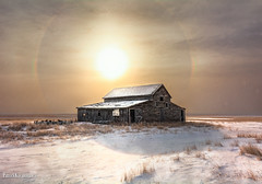Misty Morning (Pat Kavanagh) Tags: alberta farm barn prairies prairie hdr sundog sun morningsun snow winter homestead
