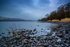 Lake Bala (Lynn Tegid) (Eccentric Exposures) Tags: landscape land water lake trees nikon d610 2485 wales hills