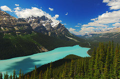 Peyto Lake (Surreal McCoy (Alvin Brown)) Tags: lake canada alberta banff peyto
