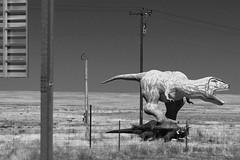 Dinosaur Park, Holbrook AZ (Compound-Eye) Tags: route66 holbrook dinosaurpark