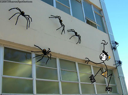 sharon_spiders