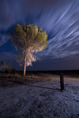 Passing Storm (TakenPictures) Tags: pictures california longexposure nightphotography light moon storm lightpainting tree abandoned nature night clouds canon painting photography eos town long exposure paint desert post ghost taken full fullmoon tokina 124 mojave ghosttown passing dslr 1224mm stormclouds mojavedesert boron atx 30d paintwithlight passingstorm canon30d tokinaaf1224mmf4 takenpictures tokinaatx124afprodx mikehows