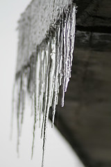 Icicles again (kirstiecat) Tags: winter canada cold ice frozen ottawa freezing icicles