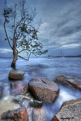 Tree'd In For The Boats (Ragstatic) Tags: city longexposure morning travel blue light sunset sea sky people sun seascape color reflection tree tourism beach water clouds sunrise relax landscape boats happy dawn photo google search nikon singapore rocks asia exposure view nightshot glory famous culture visit tourist photograph destination changi dri hdr stockphoto blending sigma1020 d80 madeexplore singaporelandscape rags1969 singaporenightshot theroadtoheaven singaporeview singaporeseascape singaporetourist
