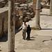 El que sí es pot fer en un jaciment arqueològic, Termes de Trajà i Adrià, Cirene