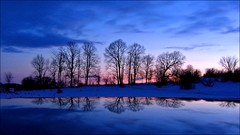 Twilight Tree Line (Kirpernicus) Tags: longexposure blue trees winter sky panorama cold color reflection nature colors beautiful car silhouette clouds automobile colorful vermont photographer natural violet panoramic excellent awards 16x9 mywinners anawesomeshot aplusphoto diamondclassphotographer flickrdiamond 16x9format theacademytreealley