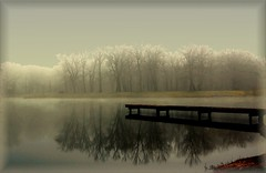 FOGGY DAYS .. (Weirena) Tags: life bridge trees light sea reflection tree art love nature water misty fog reflections landscape landscapes nikon bravo poetry colours darkness spirit magic natur foggy fantasy soul dreams karma poems universe emotions soe mystic specialeffects themoulinrouge passionphotography fineartphotos mywinners abigfave artlibre platinumphoto anawesomeshot impressedbeauty superbmasterpiece diamondclassphotographer flickrdiamond megashot frhwofavs citrit excellentphotographerawards artificia theunforgettablepictures brillianteyejewel betterthangood theperfectphotographer goldstaraward youareblessed littlestoriespicswithsoul articulateimages llovemypic ilovemypics