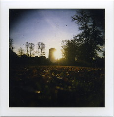 (gliesh) Tags: morning sun leaves polaroid holga montpellier holgaroid lowdown cheltenham type89 eagletower eaglestar