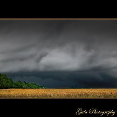 Edge Of Darkness (pearson_251) Tags: sky storm nature clouds danger dark spectacular nikon southcarolina edge carolina thunderstorm marsh treeline saltmarsh darkclouds spartina stormfront lowcountry hiltonheadisland blacksky naturesfury beaufortcounty d80 calibougesound