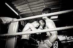 ...! Lanna Muay Thai Boxing Camp - Chiang Maï