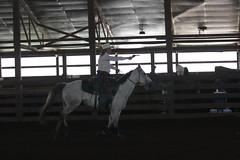 IMG_30901 (cmlburnett) Tags: horse wisconsin cowboy gun shoot balloon mounted shooting montfort mountedshooting montfortwisconsin borderwars cowboymountedshooting mountedjustice