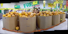 Lots and lots of pumpkins! (Steve Brandon) Tags: decorations autostitch ontario canada halloween pumpkin geotagged widescreen ottawa scarecrow supermarket suburb produce crow grocerystore nepean raven shoppers jackolanterns customers citrouille picerie  supermarch  foodbasics  merivaleroad