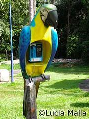 Orelhão Arara azul