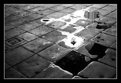 Arco Riflesso (marcopesavento) Tags: italy italia nikond50 vicenza palladio veneto basilicapalladiana