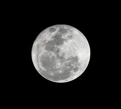 Lua (moon) (Leonardo Almeida) Tags: sky moon white black night ball natural zoom space noturna lua tele moonight celeste satlite espaco