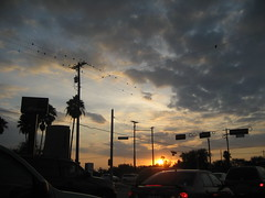 Flickrites, Good Evening_0157 (jaciii (off&on)) Tags: blue trees sunset red white house black green cars birds yellow clouds canon gold gray intersection bushes plam sd600 canonsd600 platinumphoto anawesomeshot flickrenvy superbmasterpiece worldwideopen pofpop11