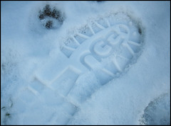 A Snow for All Species (blonde_sage) Tags: snow boots footprints frenchbulldog pawprint uggs