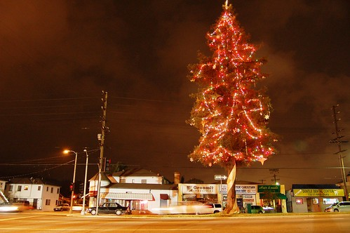 Glendale Tree Lit