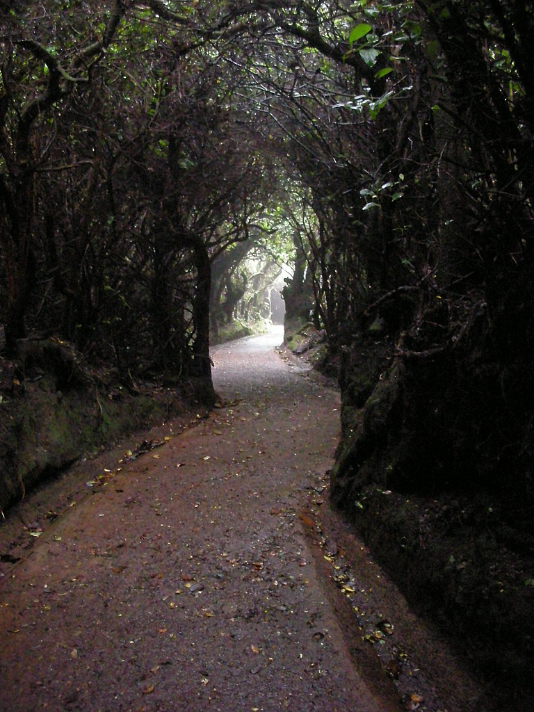 Overhanging path
