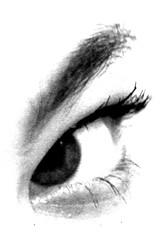 011 | Smashbox (vyxle) Tags: bw eye me look photoshop self see eyelashes makeup yay explore sp eyebrow highkey mascara pupil smashbox explore497 explore192 anawesomeshot explore208 superbmasterpiece explore243 diamondclassphotographer flickrdiamond 365ish 2008yip ikindalookprettyhere