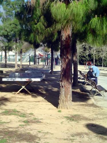 Parque de Son Cotoner