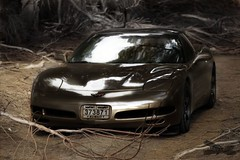between trees 1 (MadVette) Tags: tree 1999 427 kuwait mad corvette berserk q8 mti   kuwaitartphoto madvette
