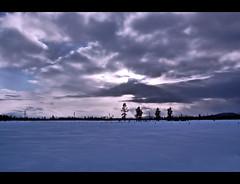 Horizon (*janh*) Tags: winter sky horizon meadow heavens onblue lapine mywinners abigfave worldbest justsayn countrysgood wildandunruly countrysucks imalittlebitcountryandawholelottarocknrolljustsayn